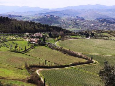 3-Winery